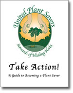Take Action! Guide
