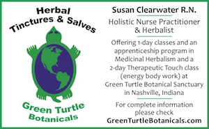 Classes in Herbal Medicine and Internship Opportunities from Green Turtle Botanical Sanctuary