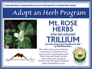 Mt Rose Herbs