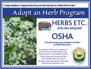 Herbs Etc.