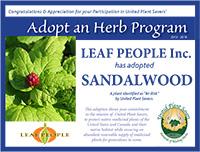 ups leafpeople sandalwood