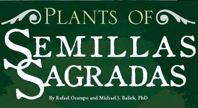 HerbalGram No. 87 - Plants of Semillas Sagradas