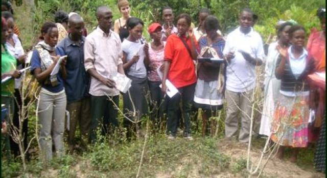 Forest School for Traditional Health Practitioners - PROMETRA Uganda