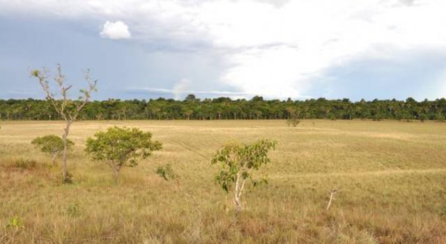 Sacred Seeds at Reserva Natural La Pedregoza