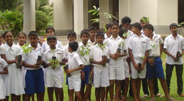 children-and-seedlings