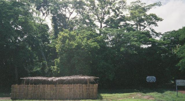 Tafi Atome Monkey Sanctuary and Cultural Village