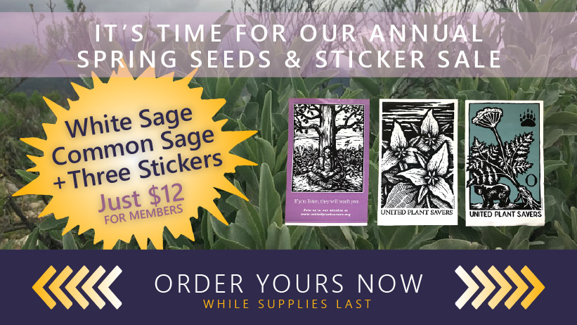 UpS Spring Seeds & Stickers