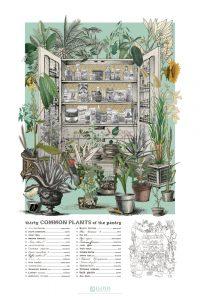 Plant-Blindness Poster