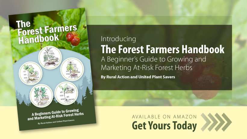 The Forest Farmers Handbook Available on Amazon