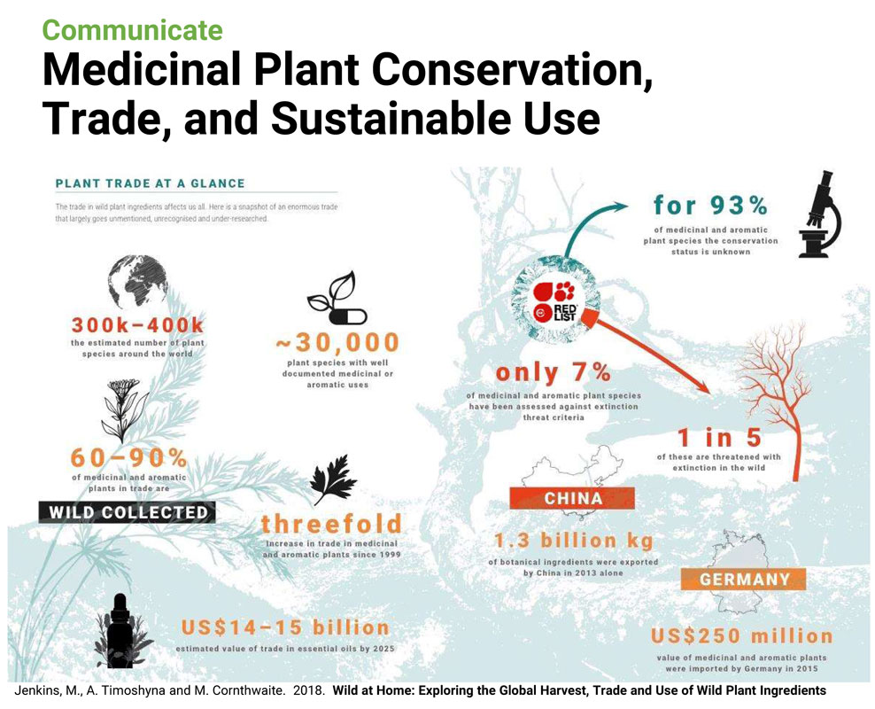 plant-trade-at-a-glance