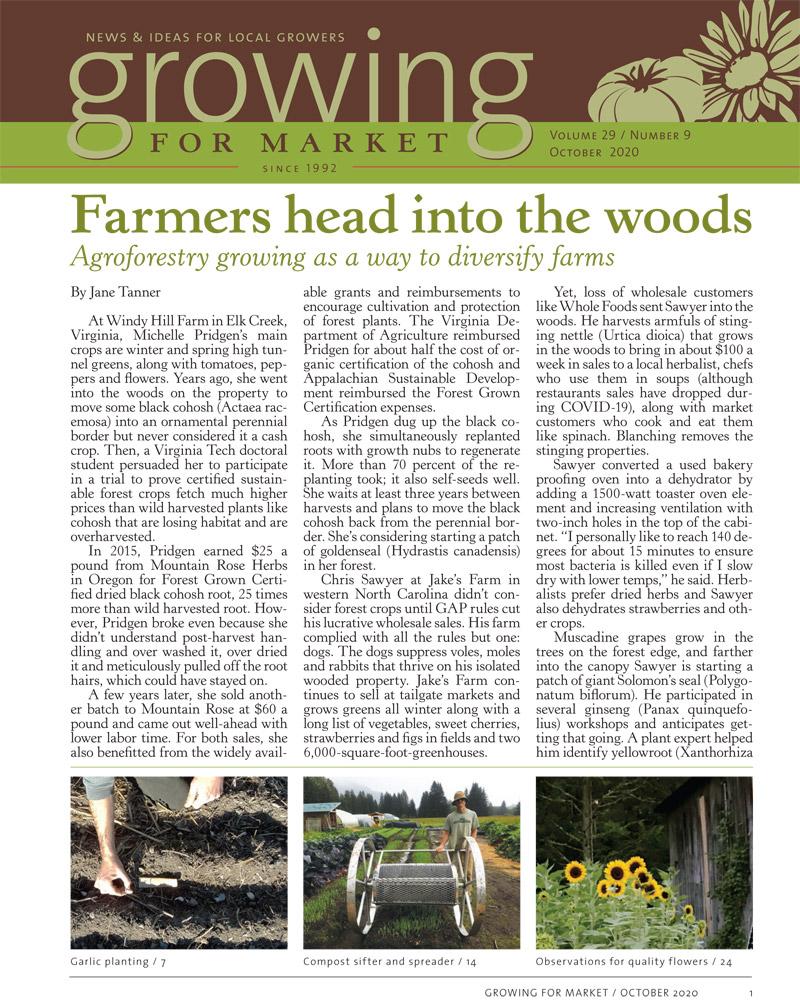 Farmers Head Into the Woods by Jane Tanner
