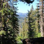 Sierra Views