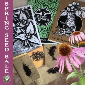 Spring Seed Sale