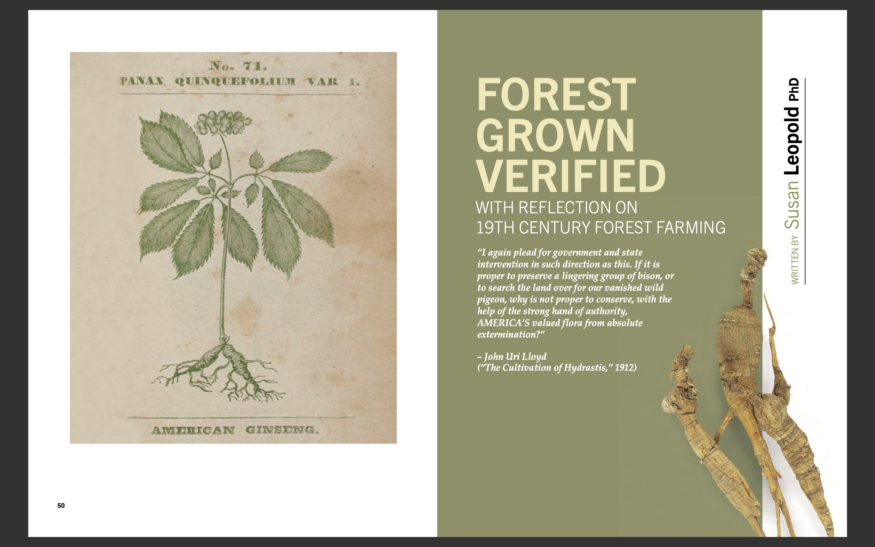 Forest Grown Verified with Reflection on 19th Century Forest Farming